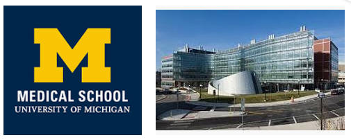 University of Michigan Ann Arbor Medical School