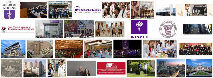 New York University School of Medicine