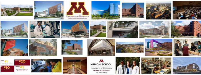 University of Minnesota Medical School